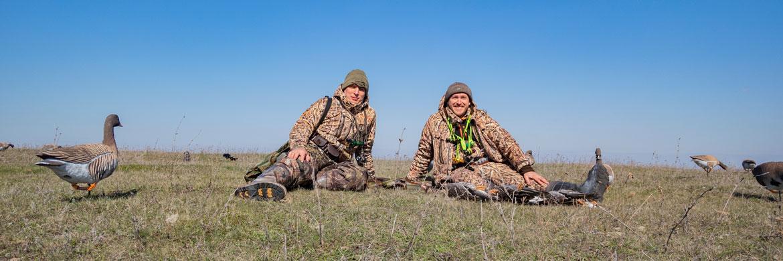 Чучела гусей для охоты весной